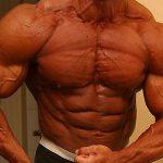 Efficacité des stéroïdes anabolisants sur la construction de différents groupes musculaires